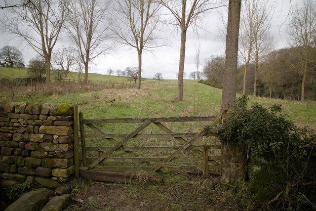 Gate north of Gale Lane