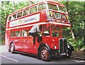 TQ0760 : Cobham Bus Museum - RT50 by Colin Smith