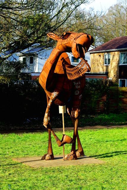 Impington Camel