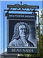 TQ5839 : Beau Nash Pub Sign by John P Reeves