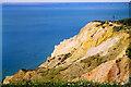 SZ3085 : Cliff above Alum Bay by Bill Boaden