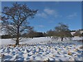 NT2441 : Snow on the golf course, Peebles by Jim Barton