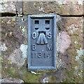 NY4962 : Flush bracket benchmark, Newtown by Adrian Taylor