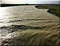 TF2210 : Choppy water on the River Welland at Fen Bridge, Crowland by Richard Humphrey