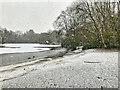 SD8303 : Snow Storm at Heaton Park Lake by David Dixon