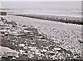 TA1575 : The beach at Speeton Sands by Richard Sutcliffe