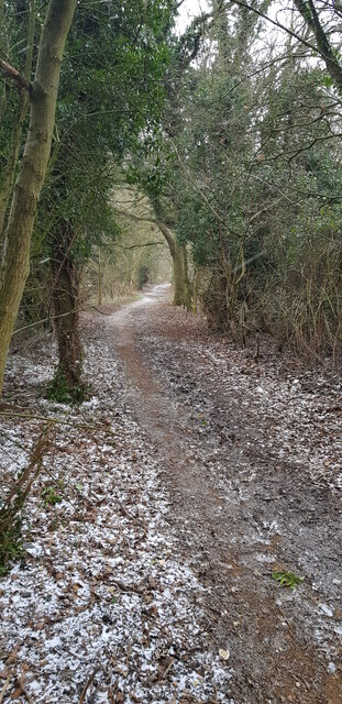 Footpath at end of Coppins lane