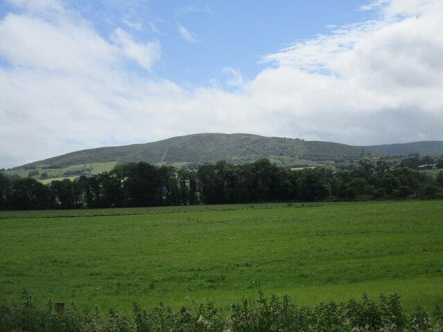 Grass field at Kilmeedy
