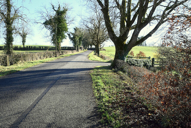 Aghintain Road, Donaghmoyne