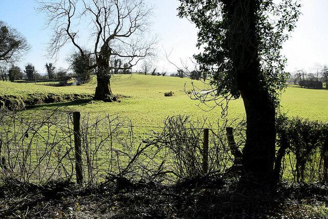 Knocknacarney Townland