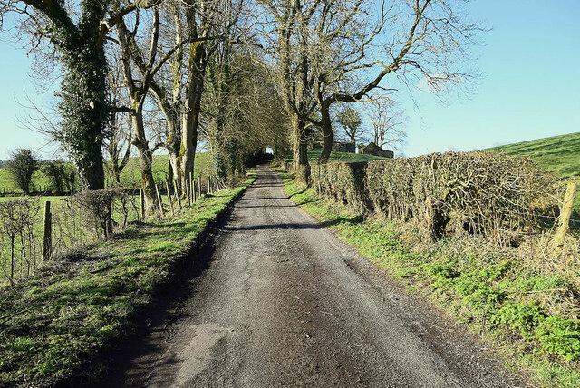 Shantonagh Road, Lislane