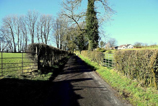 Road in shadow, Lislane