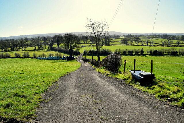 A long winding lane, Lislane