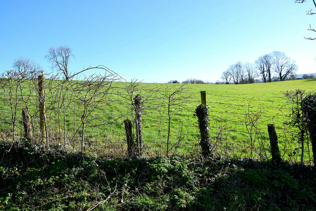 Tullyquin Townland