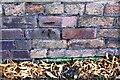 SK5640 : Benchmark on cemetery wall on SE side of Cromwell Street by Luke Shaw