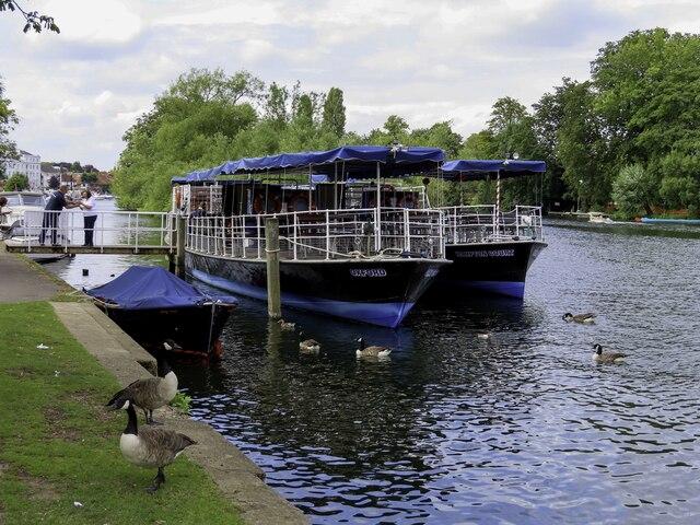 Pleasure cruisers in Henley on Thames by Steve Daniels
