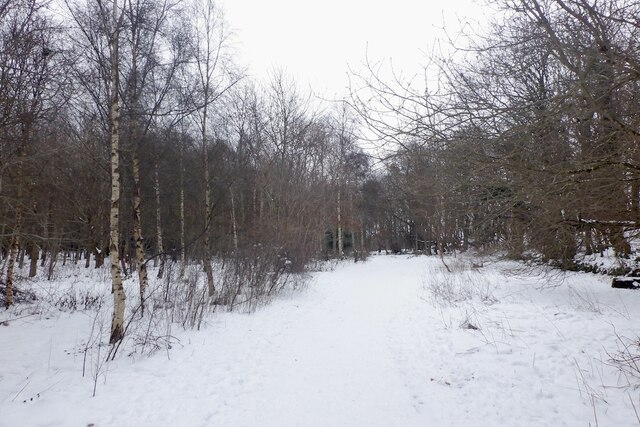 Path, Craigmillar Castle Park