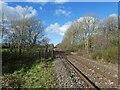 SS5826 : Railway line to Barnstaple by Roger Cornfoot