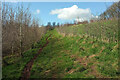 SX8864 : Path, Conqueror Wood #1 by Derek Harper
