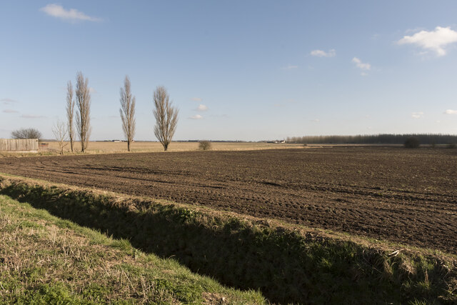 Fenland off Timberland Drove