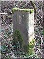 NZ2549 : Old Boundary Marker on Waldridge Fell by Mike Rayner