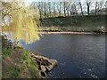 SE1322 : The River Calder upstream of Brookfoot Mills, Southowram by Humphrey Bolton