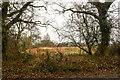 TG3428 : Rough Grassy Field by David Pashley