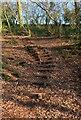 SO8270 : Steps linking two footpaths, near Hartlebury, Worcs by P L Chadwick