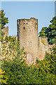 SO5074 : Ludlow Castle - Mortimer's Tower by Ian Capper