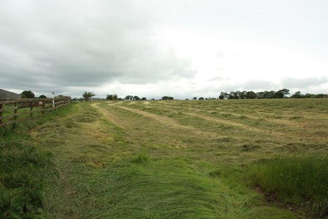 Mown grass field, Long Liberty Farm
