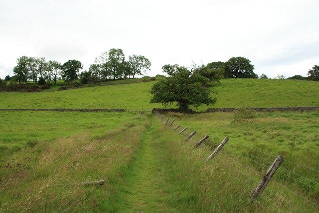 Footpath at the head of John O'Gaunt's Reservoir