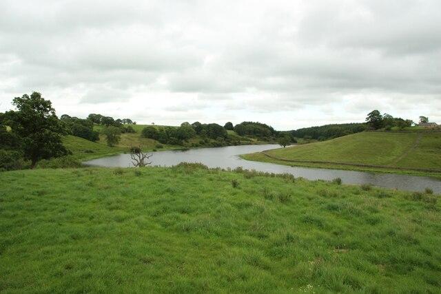 Grassland beside John O'Gaunt's Reservoir