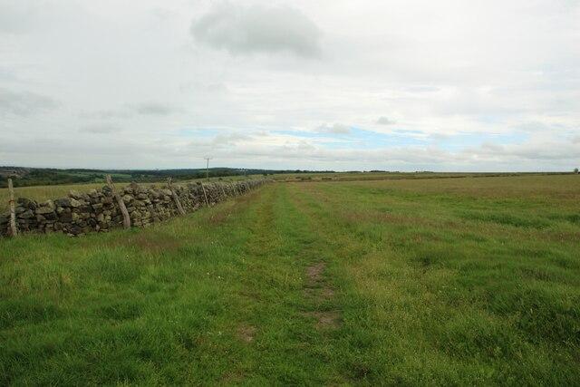 Field Edge Footpath