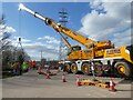 SX9290 : Using a mobile crane to lift Salmonpool Bridge onto dry land for repair by David Smith