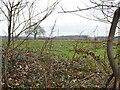 SO8691 : Himley Field by Gordon Griffiths
