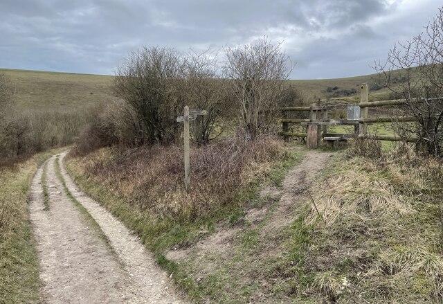 Path Junction by Chris Thomas-Atkin