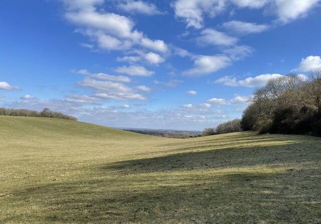 Wellcombe Bottom by Chris Thomas-Atkin