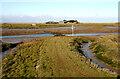 TQ9490 : Approach to Potton Island causeway from Fleet Head by David Kemp