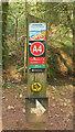 SX8863 : Waymarks by Hollicombe Lake by Derek Harper