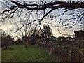 TF0820 : A windy morning by Bob Harvey