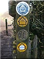 ST6163 : A post full of path markers by Neil Owen