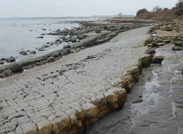 Lower Foxton Limestone 2