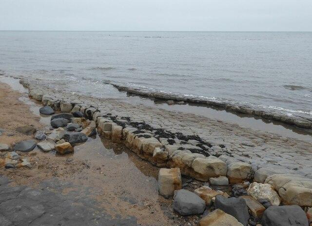 Lower Foxton Limestone 3