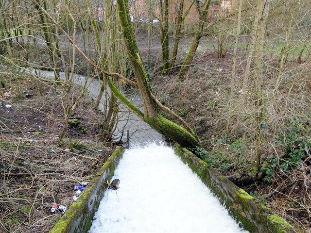 Sudden Brook