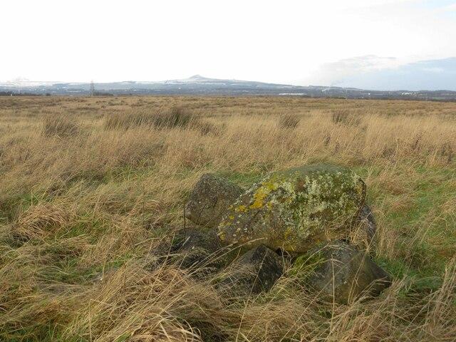 Bogley's Farm, Kirkcaldy