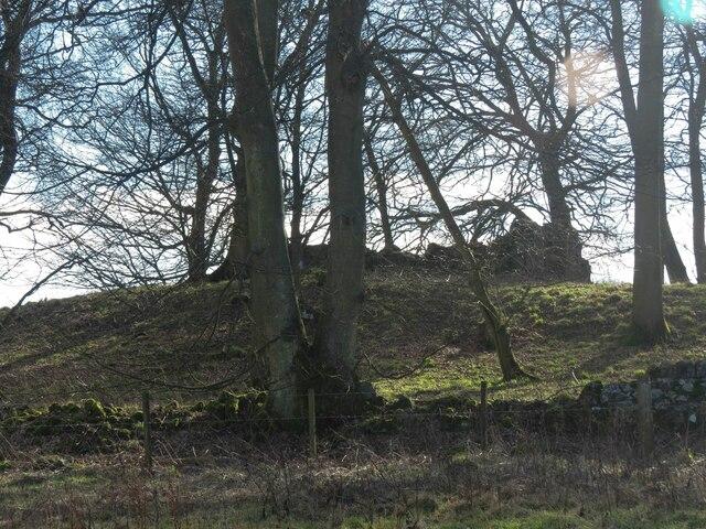 Remains of Kirkforthar Chapel