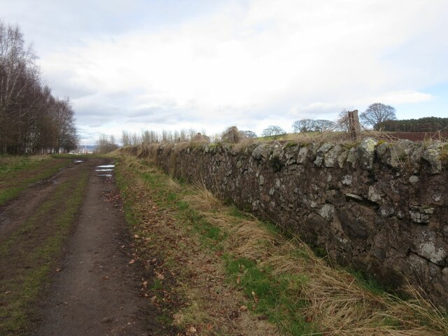Wall on Wormit Hill, Woodhaven