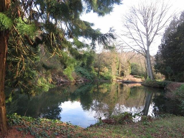 Pond in Tayfield Estate