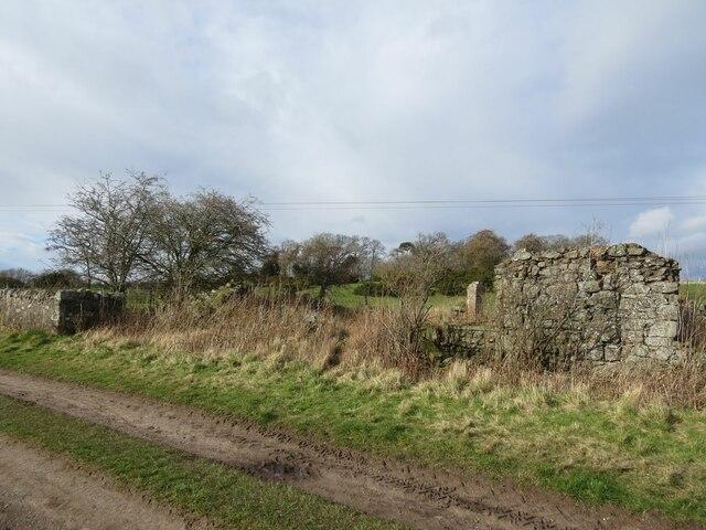 Ruin near Wormit Hill