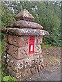 NR9333 : Arran Post Box by thejackrustles
